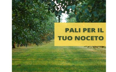 NEWS – PALI PER NOCETI